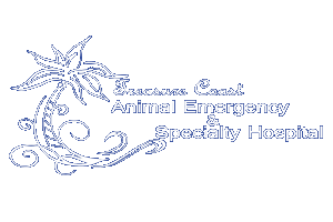 Treasure Coast Animal Emergency and Specialty Hospital